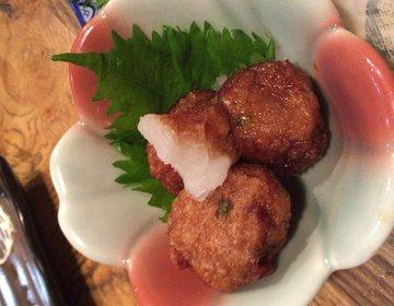 【食の都鹿児島県】25店舗から選べる!かごっまふるさと屋台村でおいしい薩摩料理を楽しむ!
