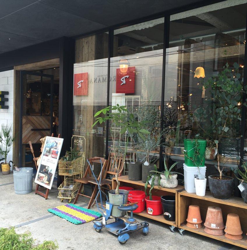 ACME Furniture (アクメファニチャー) 自由が丘店