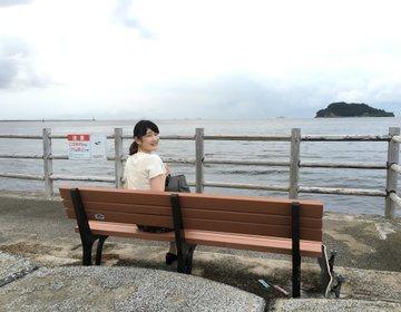 【横須賀ドライブデート♪】老舗の海軍カレーとスケボーもできる公園で横須賀満喫プラン♪