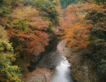 秋川渓谷ドライブ 都心から60分 郷土料理と大自然満喫!【黒茶屋、瀬音の湯、大岳鍾乳洞、払沢の滝】