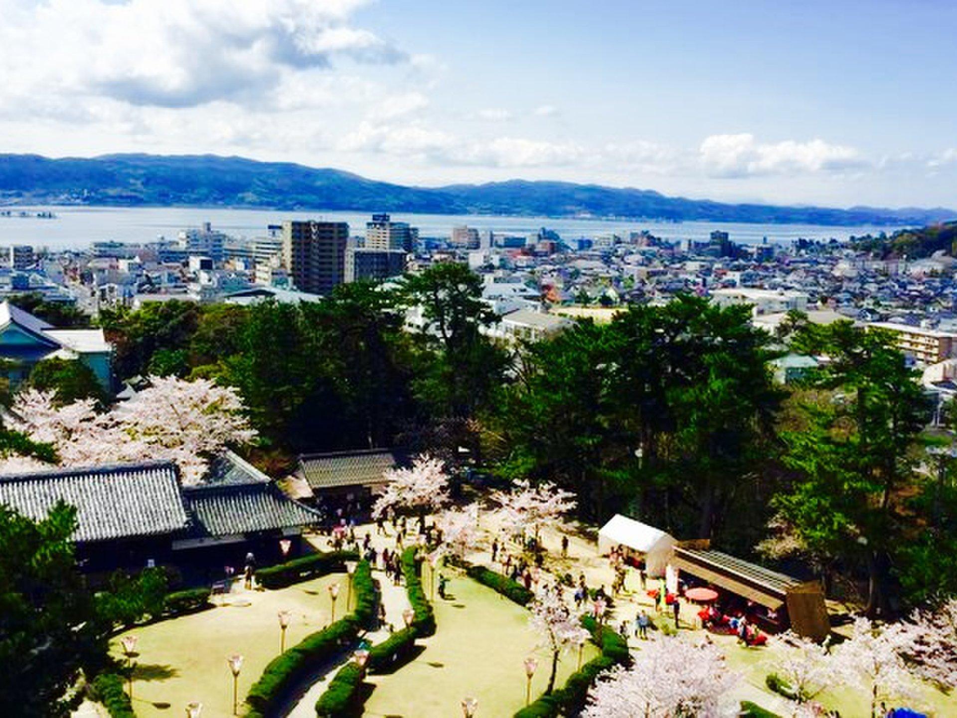 【春になったら行きたい】城×桜!全国のお城と桜が美しいおすすめスポット6選