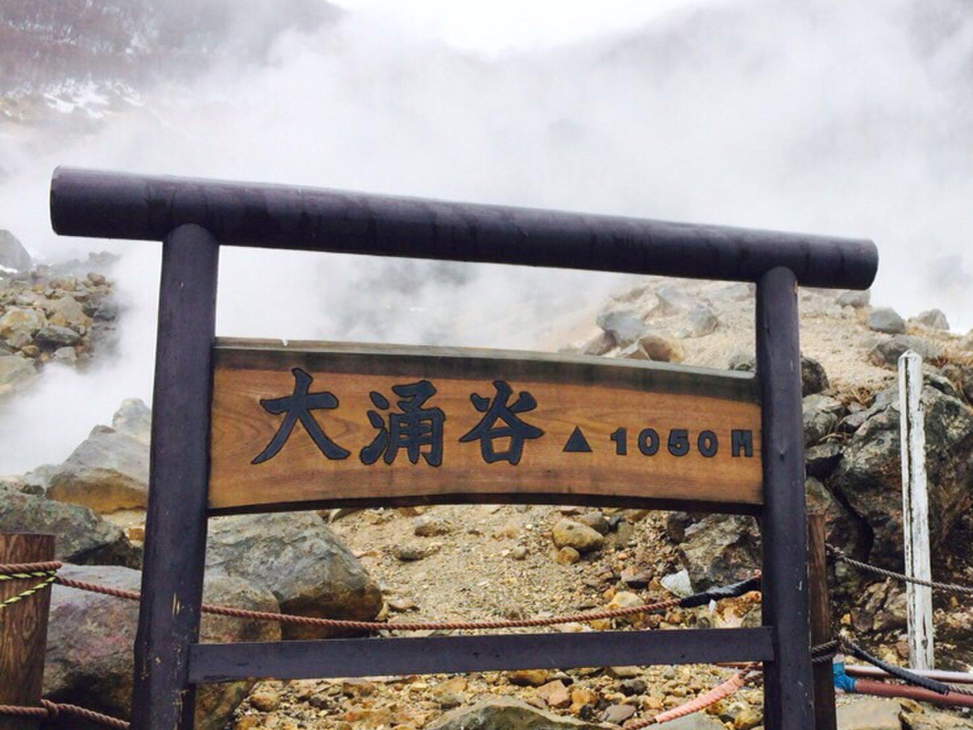 海に温泉!おすすめ弾丸ドライブデート【江ノ島からの箱根】