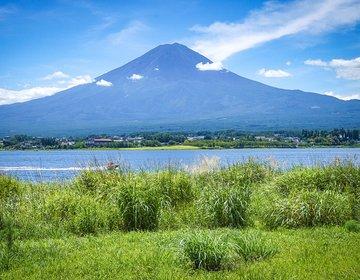 洞穴巡りも探検する休日アドベンチャーツアー 富士山行くなら迷いの森青木ヶ原樹海へ