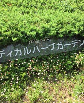メディカルハーブガーデン生活の木薬香草園