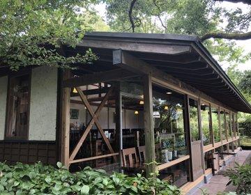 素晴らしい景色と美味しいワインと♪森のレストラン《ホイリゲ》