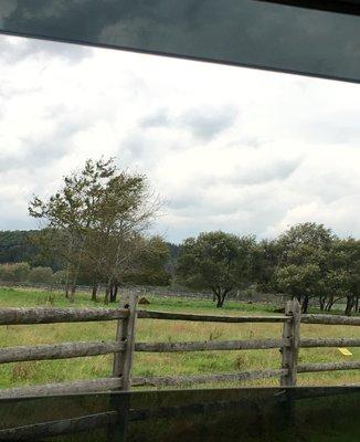 えこりん村 みどりの牧場