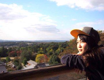 【春に大人気!奈良の観光おすすめコース】大仏様の定番スポットから景色が綺麗な穴場スポットまでご紹介♪