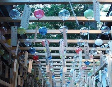 【川越】 今年の夏流行!縁結びの風鈴で有名な川越氷川神社に行ってきた!
