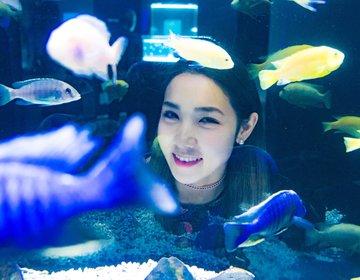 日本一と世界初がある水族館⁉注目スポット♡北海道フォトジェニック女子旅♡