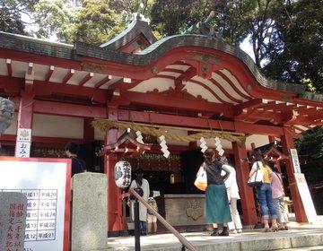 熱海女子旅❤︎国内屈指パワースポット『来宮神社』二千年越え本州1位の巨樹〜スイーツカフェも有