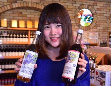 【ふらのワイン工場】北海道・富良野のおすすめスポット!ワインが無料で飲めるんです♪