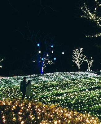 江の島シーキャンドル(展望灯台)