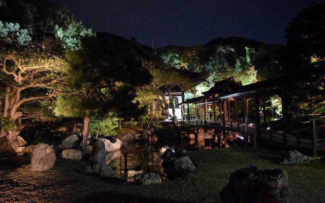鷲峰山 高台寺 (Kodai-ji Temple)