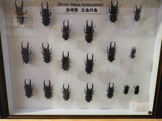 たびら昆虫自然園