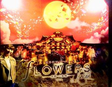 世界遺産×現代アート!フラワーズバイネイキッド2018が京都二条城で開催中!