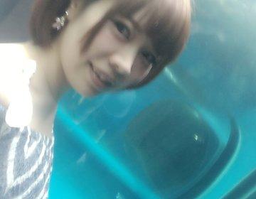 雨でもお出かけしよう!日本初『アザラシ水中トンネル』は驚愕【品川・水族館・デート・夏休み】