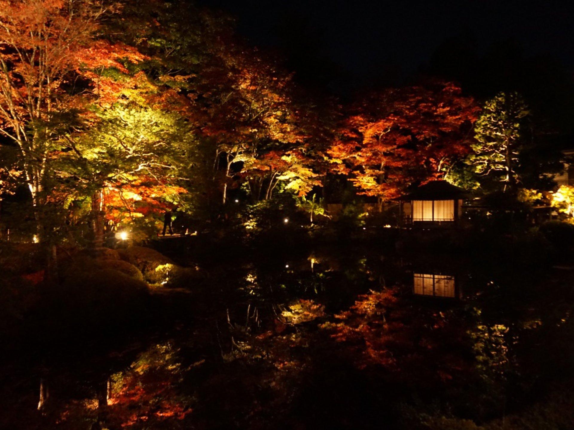 日光山輪王寺の世界遺産登録15周年記念逍遥園ライトアップ!