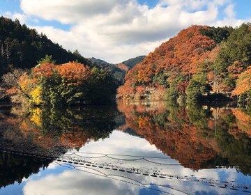【埼玉で紅葉狩り】鎌北湖で水に映る紅葉を見に行こう!