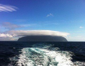【神秘の島・御蔵島】イルカと泳いだ後は新鮮魚介に舌鼓、大自然を感じる1泊2日