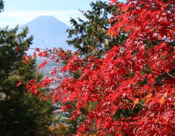 世界が認めた絶景!紅葉の新倉山浅間神社に行ってみた♪富士山がまさかの夏仕様だけど…(笑)