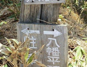 【旅猿ファン必見】岩手県八幡平【旅猿ロケ地巡り】