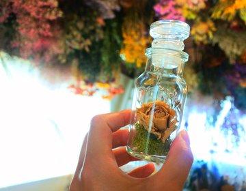 人気カフェと特別な贈り物を巡る旅・今話題の大阪玉造でおひとりさまを楽しもう!