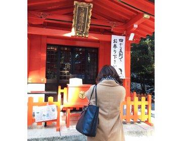 【一万円以下で泊まれるおすすめ宿】ロマンスカーで行く、一泊二日で満喫の箱根女子旅♡