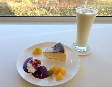 【道東】観光の満足度が上がる♪オシャレでおいしい人気カフェ おすすめ5選