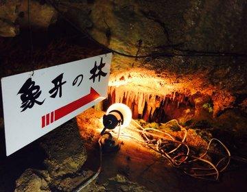 【洞窟探検しよ!】岐阜の観光名所で人気の郡上八幡・大滝鍾乳洞は異空間を味わえるオススメスポット!