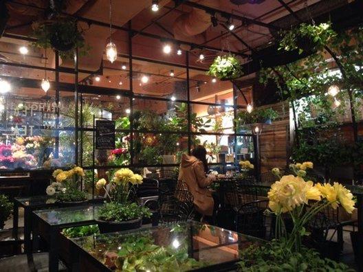 青山フラワーマーケット ティーハウス 南青山本店