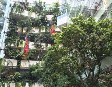 バンコクの高級デパート「エムクオーティエ」でランチ&買い物♡