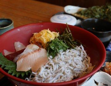 【神奈川・鎌倉】小町通りでランチ!美味しいしらす丼とボリューム満点天丼!「八倉」さん♪