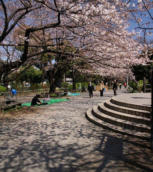 千鳥ケ淵公園