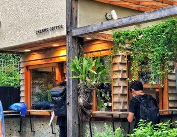 中目黒おすすめカフェ・木の温もりに癒される『オニバスコーヒー』