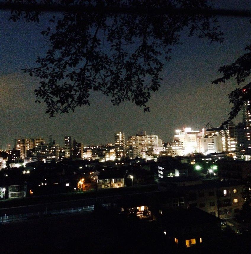 東京都立桜ヶ丘公園