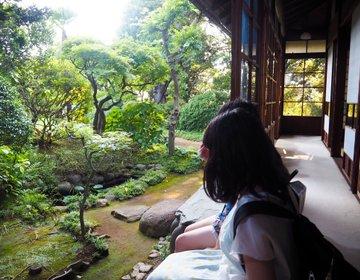 【松戸の夏を満喫!】暑い夏にうんざりしているあなたへ!千葉県松戸市で1日かけて納涼スポットを巡る旅!