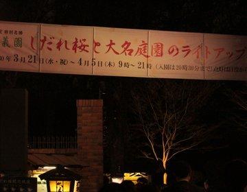 幻想的な世界に包まれデートにぴったり!六義園のしだれ桜と大名庭園のライトアップ