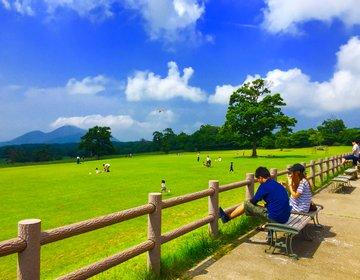 【大山のまきばへいこう】鳥取県で行きたいおすすめのスポット大山牧場みるくの里へ