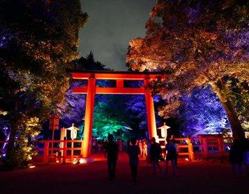 ☆世界遺産 下鴨神社が、幻想的な光のアートで彩られています!!「下鴨神社 糺の森の光の祭」☆