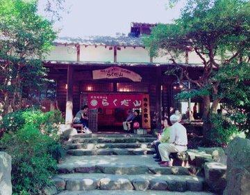 【熊本の誇る最強のお店】地鶏の名店''らくだ山''をご紹介します。