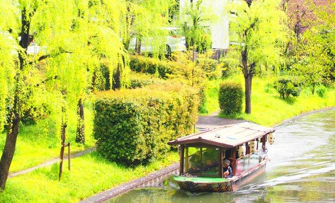 京都伏見・十石舟