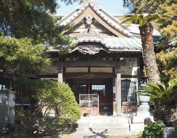 【鎌倉さんぽ】つつじの名所です!北条政子ゆかりのお寺安養院♪