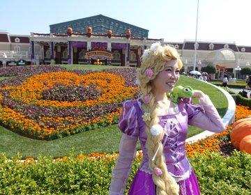 ディズニーランドで、ハロウィンの仮装したい方必見!フォトスポットやインスタ映え。ディズニーハロウィン
