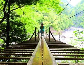 【連休におすすめ】夢の吊り橋に大井川鉄道のSL!関西発1泊2日の格安バス旅行(後半)in静岡