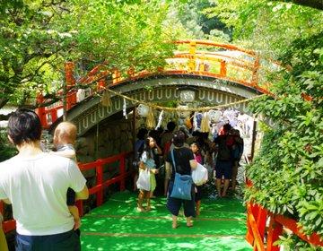夏の神社で冷んやり体験!下鴨神社で毎年開催される御手洗まつりとほっこりカフェへ♪