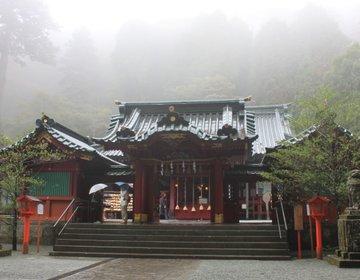 【箱根旅】雨の箱根神社!霧に煙るお社はまさにパワスポ!そして黄金のススキ野原を堪能♪
