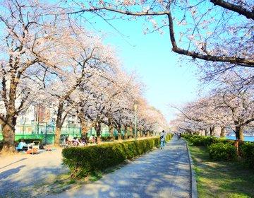 「大阪天満宮周辺でお花見デート!」桜並木が有名な南天満公園で食べる絶品ベーグル♡