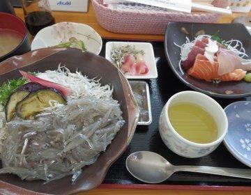 高知県安芸市の名物【釜揚げちりめん丼】を食べくらべてみた!