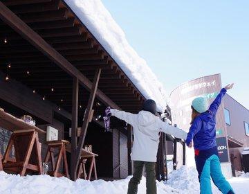 白馬から車で15分パウダースノーが楽しめる栂池高原スキー場朝と晩はここで楽しむ!