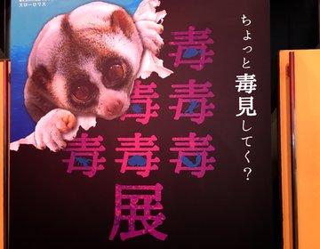 【大阪・期間限定】サンシャイン水族館監修!毒をもつ生き物大集合!大阪会場限定生物も!?
